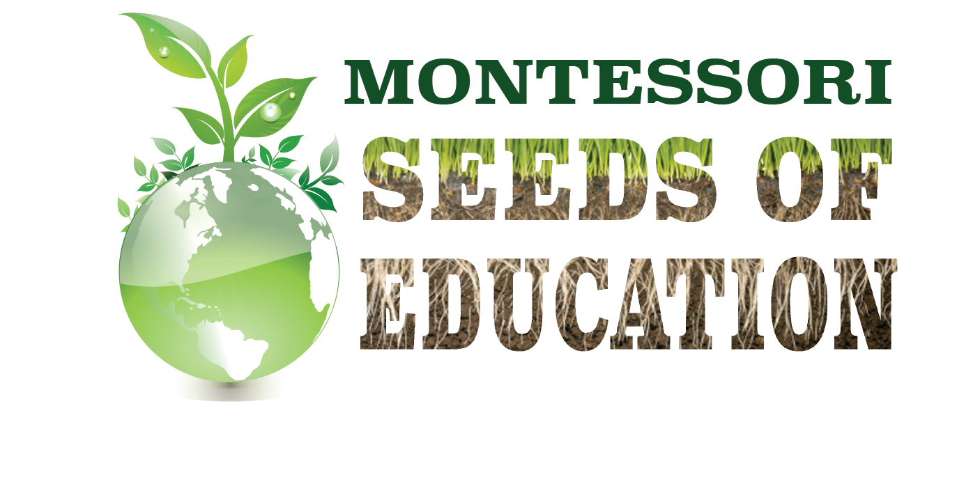 About Matt - Montessori Seeds of Education